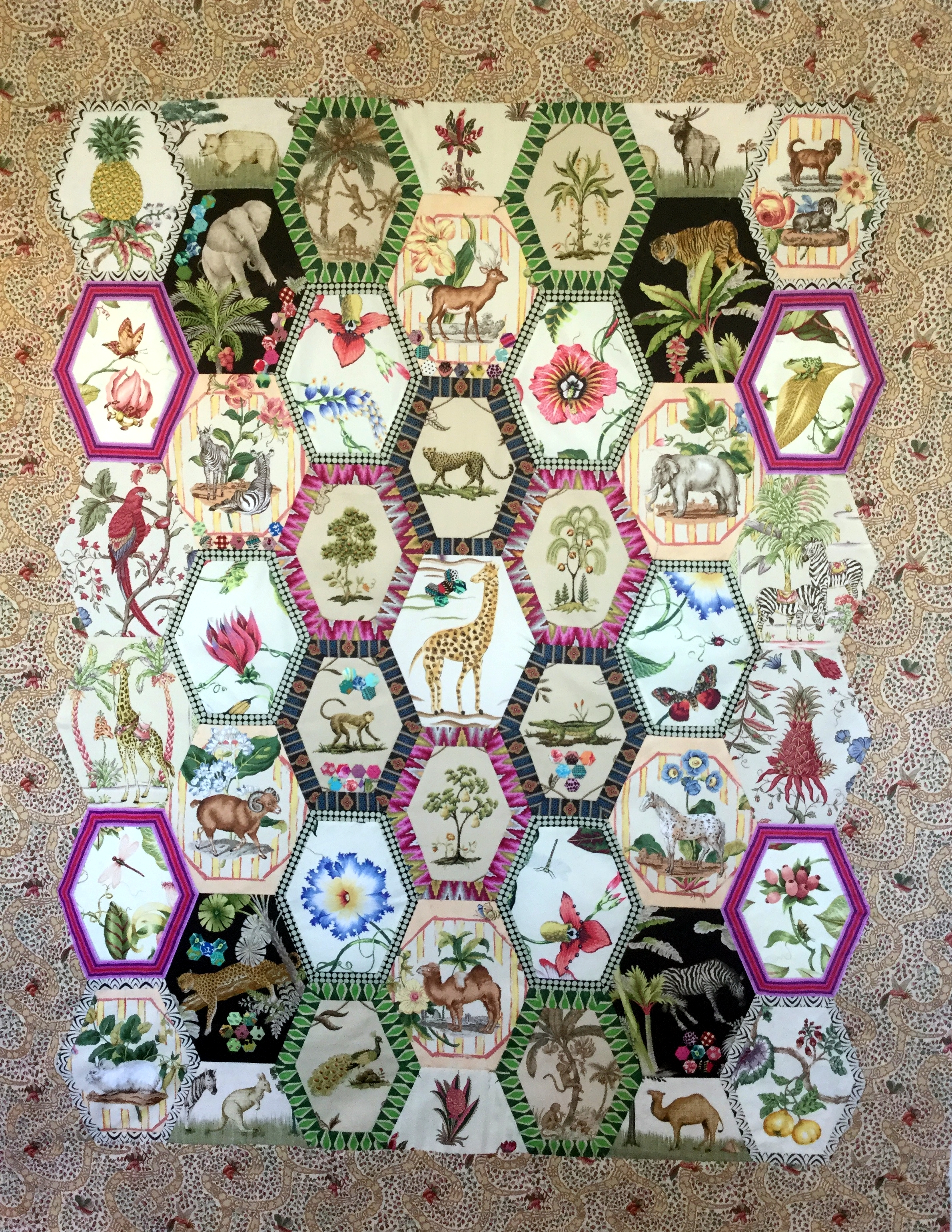 earl grey zoo template set brigitte giblin quilts